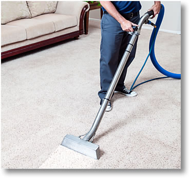 Carpet Steam Cleaning Vs Professional Carpet Shampooing